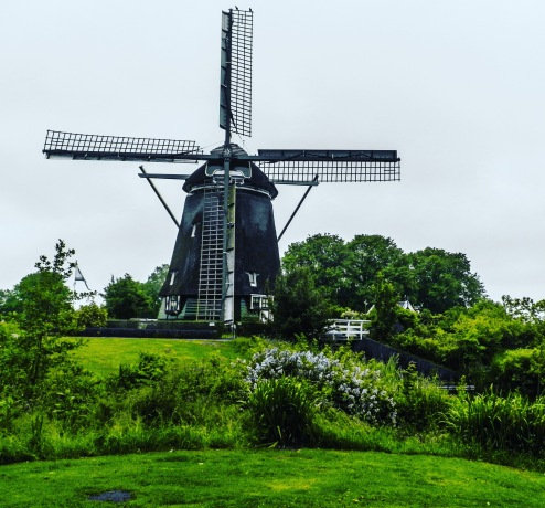 Amsterdam countryside