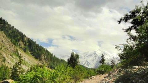 Nanga Parbat in the distance - view from valley