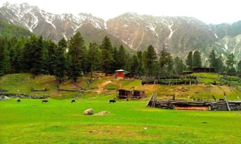 The meadow in Fairy Meadows